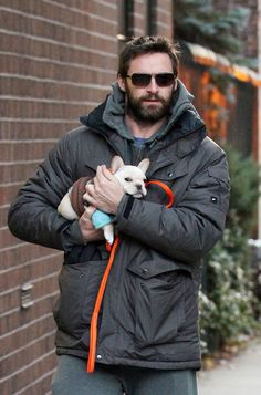 Hugh Jackman's French Bulldog, Peaches