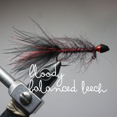Pyramid Lake Flies available @ the Mimic Fly Shop. Pyramid Lake Fishing Reports, Fly Pattern Recipes, and Tying Videos. Fly Fishing Pyramid Lake Information