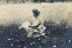 A field of daisies, ca. 1900. Photographer unknown to me.
