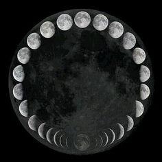 Le figlie dell'Antica Religione)O(: Le tredici Lunazioni