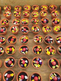 Edible Flower Pots by Theo Michaels #edibleplantpots #veganrecipes #vegan #theomichaels #edibleflowerpots