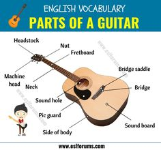 Parts of A Guitar: Different Parts of A Guitar in English with ESL Picture! - ESL Forums