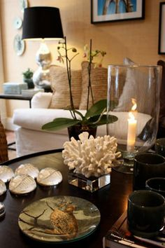 Kristina Lifors Interior Design~my coral on a base for bookshelves