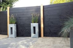 Summer Garden, Fixer Upper, Backyard Landscaping, Plank, Fence, Gate, Concrete, Sweet Home, Shed