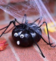 Creepy critters mini pumpkin spider