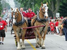 The horse drawn carriages used by Humes Horse and Carriage Rides are of superior quality.