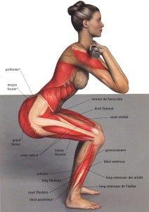 Le squat est un exercice très populaire #squat, #amaporte