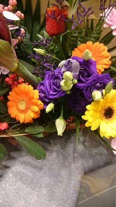Mooie paarse rozen
