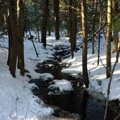 Snowy brook NH