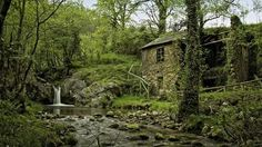 Hd Forest Waterfall By Ruins Of A Stone Cottage Wallpaper Pictures Forest Cottage, Cottage In The Woods, Forest House, House Trees, Cottage Style, Waterfall House, Forest Waterfall, Stone Cottages, Stone Houses