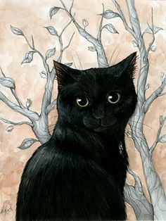 black cat and branches I Love Cats, Crazy Cats, Cool Cats, Black Cat Art, Black Cats, Black Kitty, Cat Drawing, Cats And Kittens, Cat Lovers