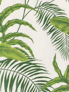 fpc- BT154744  ― Eades Discount Wallpaper & Fabric  Seabrook- Raymond Waites