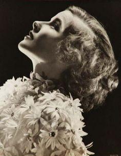 sala66:  Katharine Hepburn, por Ernest Bachrach, 1933