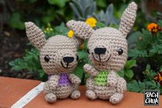 Last year I created an amigurumi Kangaroo to take with me while I traveled. I received a lovely email shortly after if I'd ever release the pattern for it. I promised I would, and finally (th…