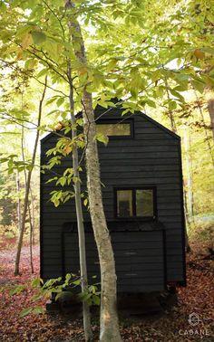 Mini-Maison CABANE - Extérieur / Tiny House CABANE - Exterior Construction, Tiny House, Mini, Plants, Cabin, Home, Building, Tiny Houses, Plant