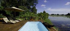 #safari #botswana #okavango delta #jacana camp #travel #honeymoon