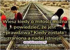 Kobieca strona internetu - ekartki, someecards, demotywatory, cytaty, teksty, sentencje, życiowe, motywacyjne, teksty, besty. Railroad Tracks, Asia, Survival, Humor, Awesome, Boys, Quotes, Movies, Movie Posters