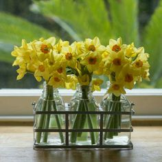632 best good morning images on pinterest in 2018 beautiful spring scented flower bottles source the flower studio at mightylinksfo