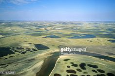 Tundra, Aulavik National Park, northern Banks Island, NWT,