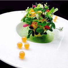 green world potatoes, crab, onion pearls & herbs Food Design, Good Food, Yummy Food, Food Decoration, Molecular Gastronomy, Culinary Arts, Creative Food, Food Presentation, Food Plating