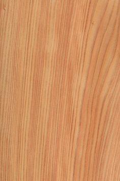 tanne furnier holzart wei tanne blatt hell nadelholz holzarten furniere holz leben. Black Bedroom Furniture Sets. Home Design Ideas