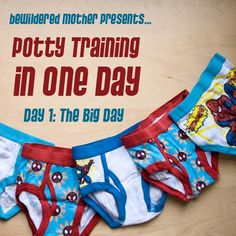 Potty Training in One Day: Day One (The Big Day) | diary of a bewildered mother