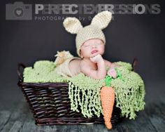 Easter Prop Newborn Bunny set with Carrot Photography Prop