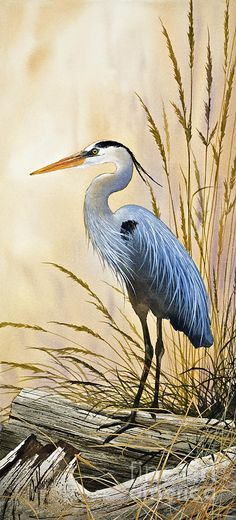 Heron Painting - Blue Herons Bright Shore by James Williamson