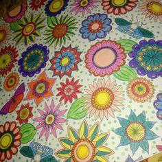 Livro de colorir Joahnna Basford , Jardim Secreto e Floresta Encantada... Lápis de cor