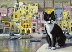 Cat in Corricella, Italy  Isy Ochoa