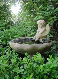 statue in bird bath Water Features In The Garden, Garden Features, Garden Whimsy, Garden Art, Summer Garden, Water Garden, Garden Angels, Garden Fountains, My Secret Garden
