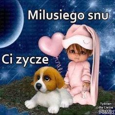 Good Night, Haha, Teddy Bear, Humor, Animals, Nighty Night, Animales, Animaux, Ha Ha