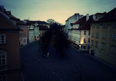 Praga 2014, N 8