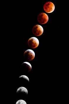Total Lunar Eclipse (April 15, 2014) | Matthew Crowley