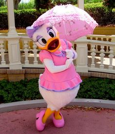 Rain or shine, Daisy is ready for the day! Who's going to see her this week?