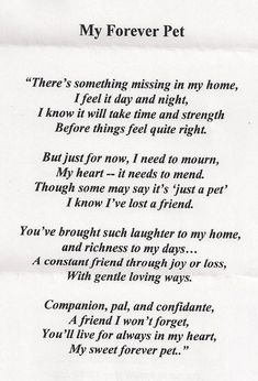 Loss of a pet it is so easy to feel alone and as though you are the only person who has ever felt like this or. Write from the heart. 13 Dog Loss Quotes Comforting Words When Losing … Dog Death Quotes, Dog Loss Quotes, Pet Quotes Dog, Dog Quotes Love, Animal Quotes, Dog Sayings, Wise Sayings, Dog Grief, Pet Loss Grief