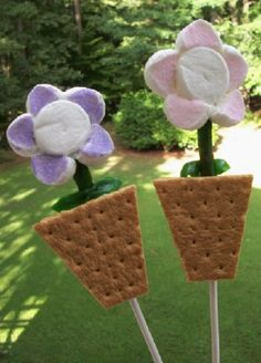 s'more pop. I have a better thought for the flower thought using the cookies that look like flowers....