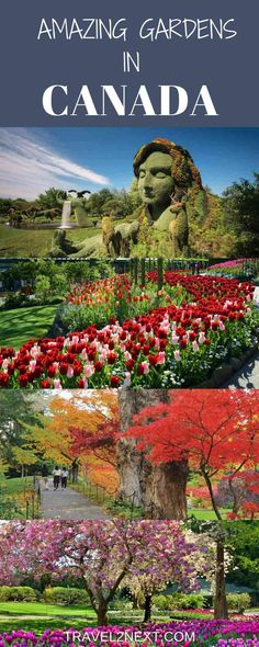 From west coast to east coast, here are my top picks for the best Canadian gardens to visit. A tour of Canada's gardens is fantastic.