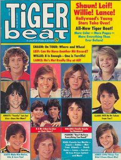 Tiger beat-Oh gosh I remember this-