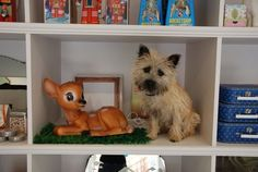 The Yellow Brick Roads Photos - Wall Photos Cairn Terriers, Terrier Dogs, Huge Dogs, I Love Dogs, Baby Animals, Cute Animals, Norwich Terrier, Paws And Claws, Dogs Of The World