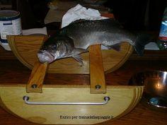 una #spigola da 1 kg e mezzo presa con il #barchinodivergente