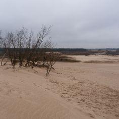 De Brabantse Sahara