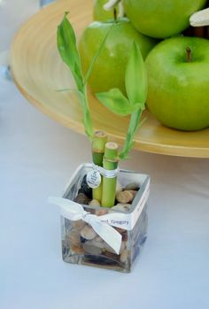 In keeping with our Zen wedding theme of the week, we would like to show you how to make lucky bamboo wedding party favors. You might not realize this, but the plant is actually not bamboo at all,…