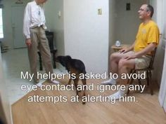 How to Train a One Way Alert to Service Dogs (hearing and medical alert dogs)