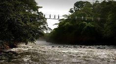 Costa Rica: Heredia - Rio Sarapiqui - Reserva Biologica Tirimbina