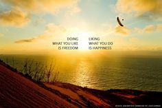 Doing what you like is Freedom...  Liking what you do is Happiness...