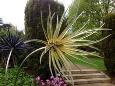 Such a unique way to add interest and unusual eye catching focal points to the garden, these glass flowers are in the gardens of The Grove, Hertfordshire England. Lovely!
