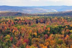 Vermont in fall foliage