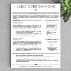 Sales Professional Resume Template  Premium Resume Samples