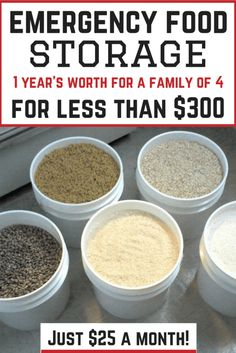 12 Month Emergency Food Storage Plan: feeds a family of 4 for $300 (just $25 a month!)